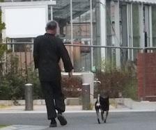 お父ちゃんと散歩するルイ